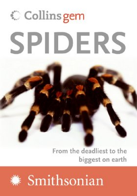 Spiders By Hillyard, Paul